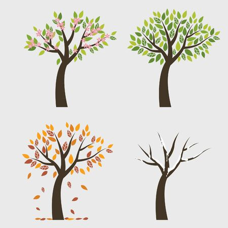 Tree 4 seasons