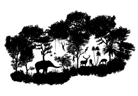 animal of wildlife Including elephant, monkeys, deers, rabbits, birds Vector