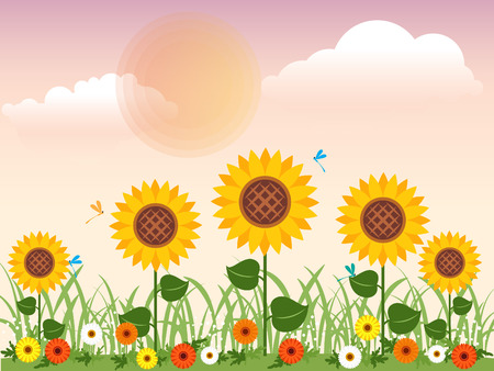 Flowery meadow with daisies, sunflowers and dragonfly in summer Vector design. Vector