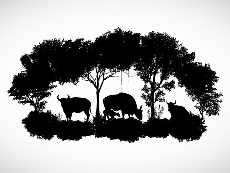 spanish bull: animal of wildlife is bull or gaur or wild ox vector design