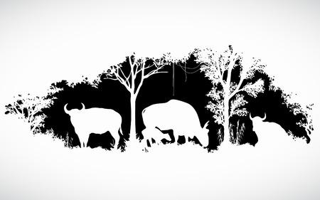 negras africanas: animales de la fauna silvestre es toro o gaur o el diseño de buey salvaje vector