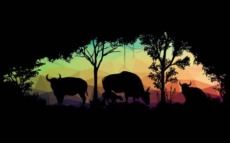 wild animal: animal of wildlife is bull or gaur or wild ox low poly vector design Illustration