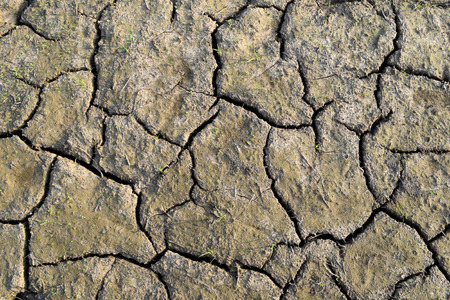 rift: Top view Dry soil is rift Close up Stock Photo