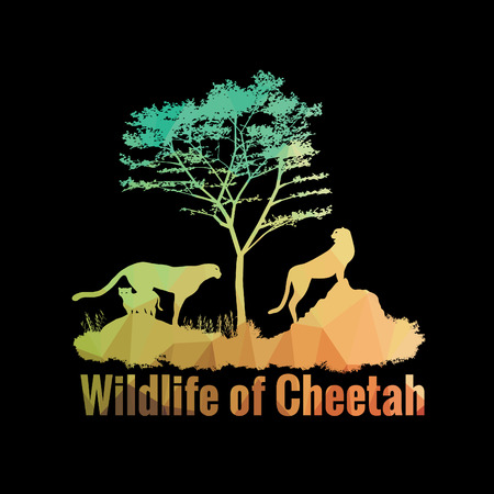 safaris: Wildlife of Cheetah low poly abstract vector design Illustration