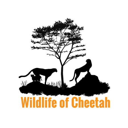 wildlife: Wildlife of Cheetah black shadow vector design