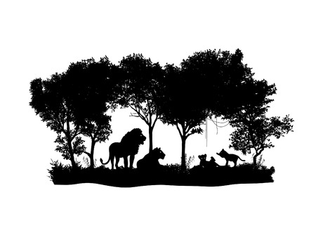 nature vector: animal of wildlife Lion  shadow vector design Illustration