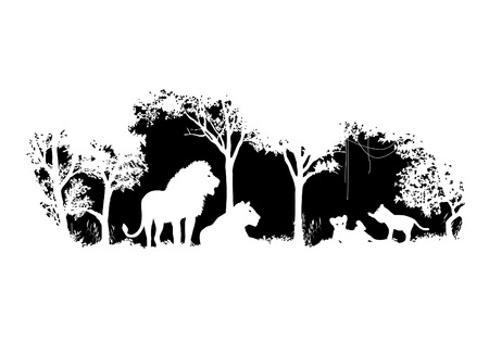 animal of wildlife Lion  shadow vector design Illustration