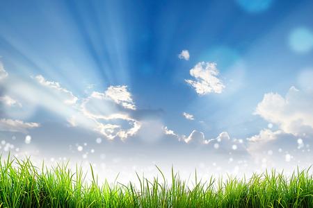 Groen Gras en bokeh lichte zon en de wolkenhemel