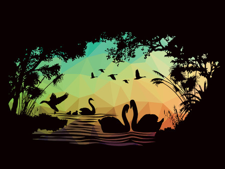 ponds: animals of wildlife Swan low poly vector abstract design Illustration