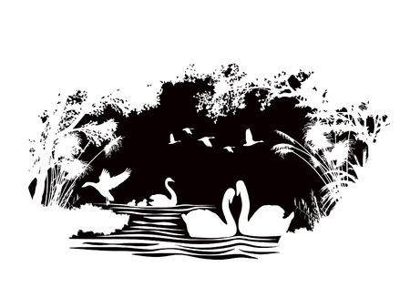 fondo blanco y negro: animales de la fauna silvestre Cisne diseño vectorial abstracto