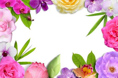 marco cumpleaños: Hermosa flor de la flor y el marco de la hoja de aislar en el fondo blanco Foto de archivo