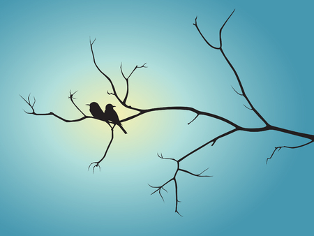 wall decal: Black shadow bird and tree branch on blue sun light vector design Illustration