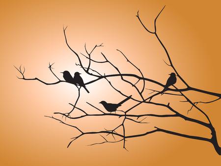 오렌지 태양 빛 벡터 디자인에 검은 그림자의 새와 나무 가지