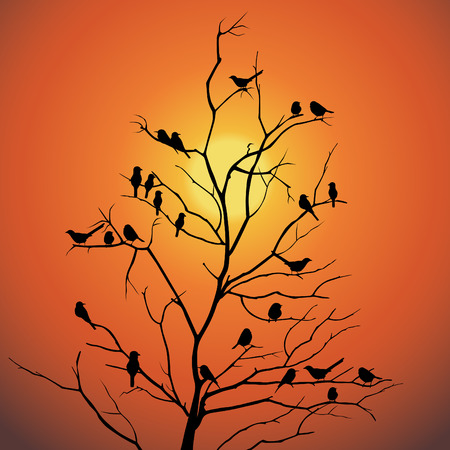 Sunset landscape vector: Birds and tree branch backlit sunlight vector design