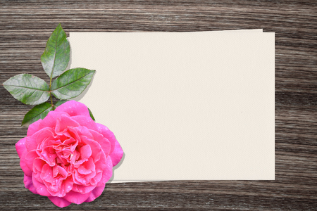 vintage design: Pink rose and and paper on wood background
