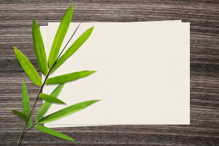 zen: Bamboo leaf and and paper on wood background Stock Photo