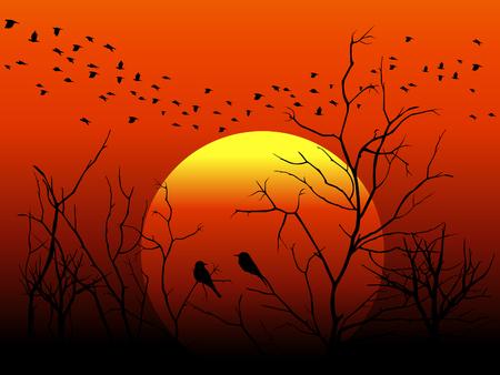 wall decal: Silhouette bird and tree branch on orange sun