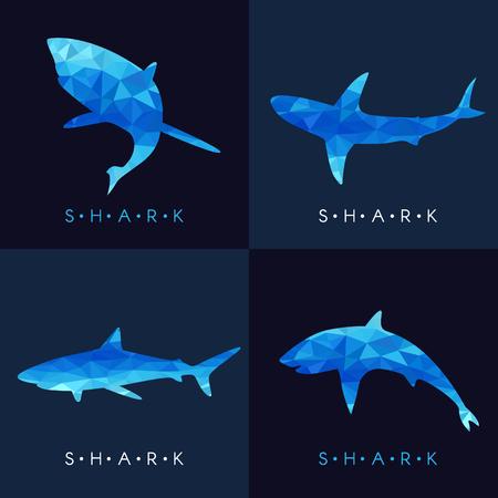 Shark - Blue low poly set Design Illustration