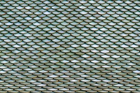 roofing: Roof tiles on the roof of an old house as background.