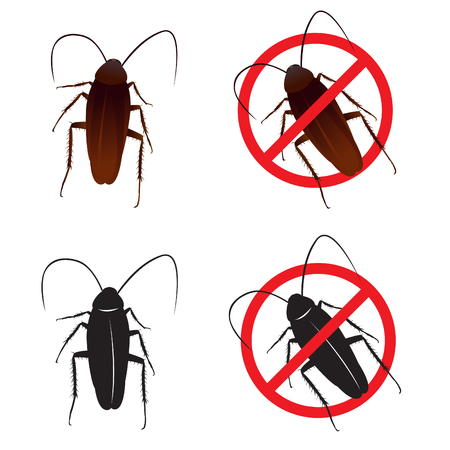 cockroach: Cockroaches and Stop cockroach sign symbols vector design