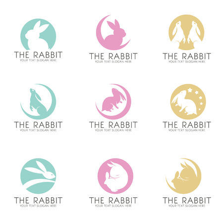 The Rabbit on the moon logo vector set design