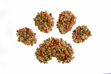 cat food: Dog Food Take shape to Dog footprint  isolate on white background Stock Photo