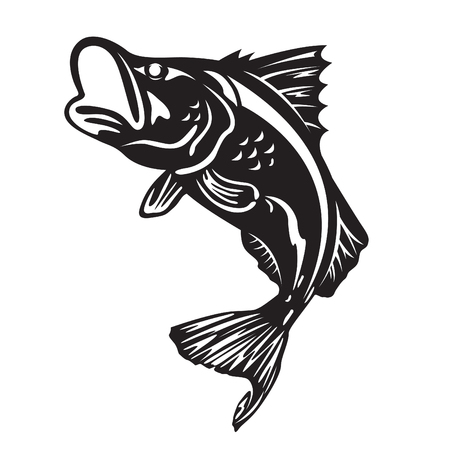 바라 문디 물고기 점프 벡터 아트 디자인 일러스트