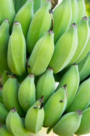 bundle: Close up Green banana bundle abstract background