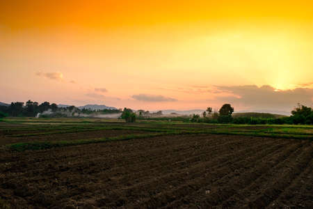 View agriculture field farms in evening time Stock Photo