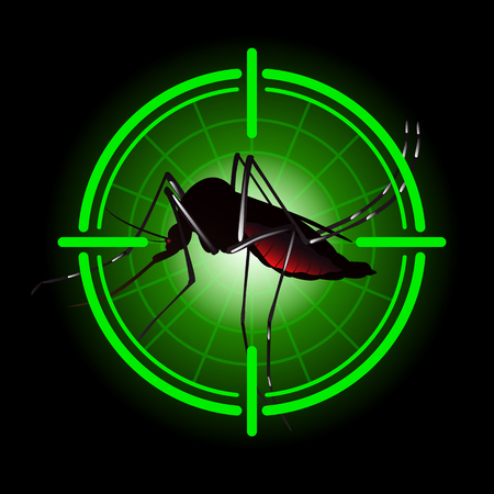 proliferation: Focus scan Aedes Aegypti mosquitoes with stilt target. sights signal. for institutional related sanitation and care Illustration