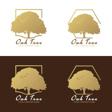 roble arbol: El oro y el diseño marrón vector de la insignia del árbol de roble Vectores