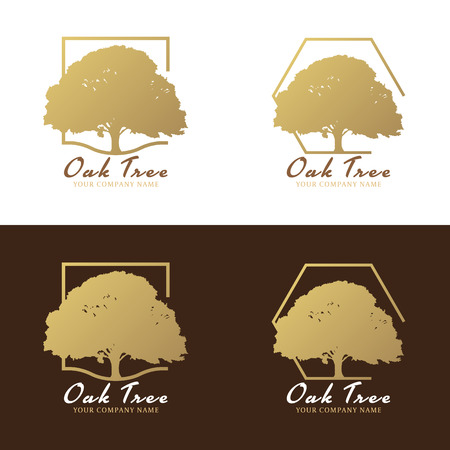 Gold and brown Oak tree logo vector design Illustration