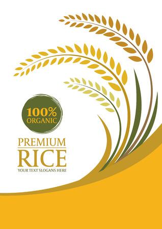 arroz blanco: arroz con cáscara amarilla para el fondo - diseño de la plantilla de tamaño A4 Disposición