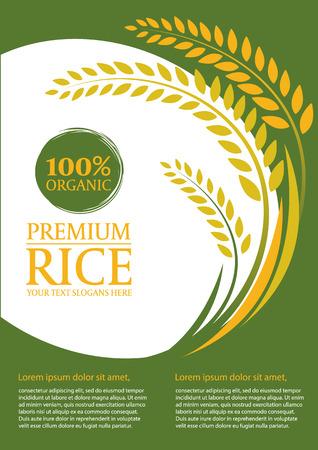 Paddy Reis und grünem Hintergrund - Layout-Vorlage Größe A4 Design Standard-Bild - 59283758