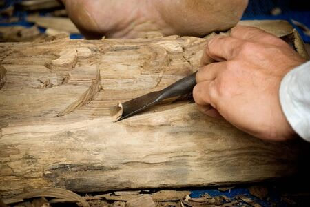trinchante: Wood carver man is using a wood chisel to extract.