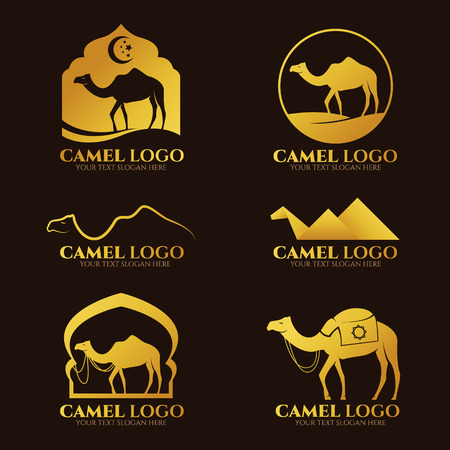 Gold Camel icon set design
