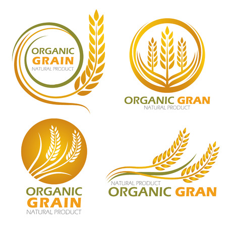 rice paddy: Gold circle paddy rice organic grain products and healthy food banner sign set design Illustration