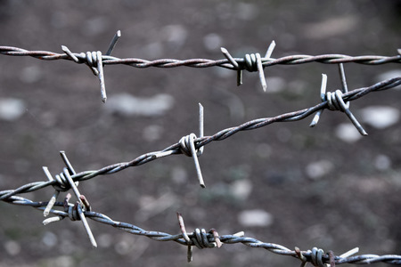 Close up Barbed Wire Fence line abstract style Stock Photo