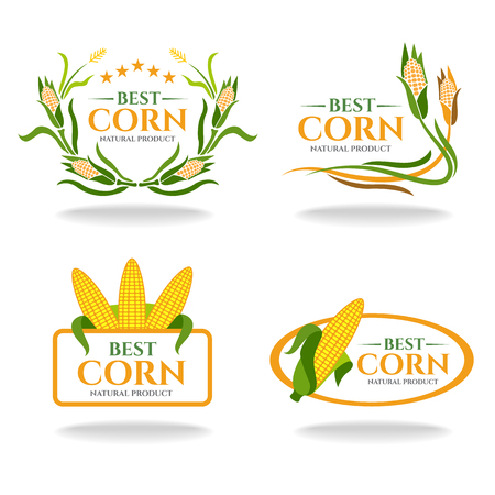 yellow corn: Yellow green Corn best and natural products banner sign vector design Illustration