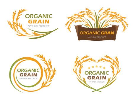 黄色水田水稲有機穀物製品と健康食品バナー記号のベクトルのセットのデザイン  イラスト・ベクター素材