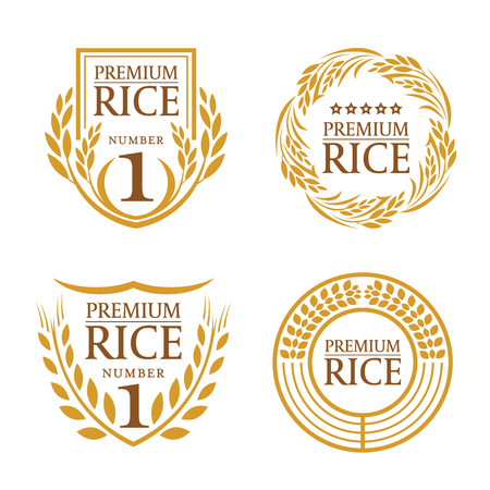 Orange brown paddy rice organic natural product banner logo vector design Çizim