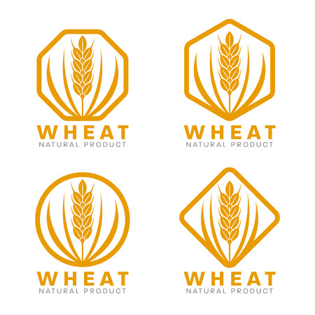 Orange Wheat rice logo sign vector design