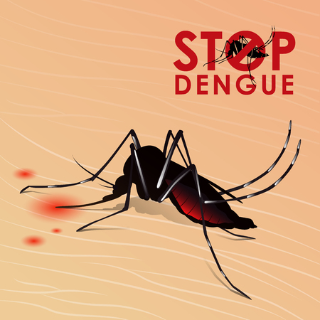 Stop Dengue fever with Mosquito sucking blood on skin vector design Stock Vector - 82508551