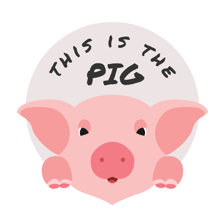 This is the pig with cute face pig and circle vector design Illustration