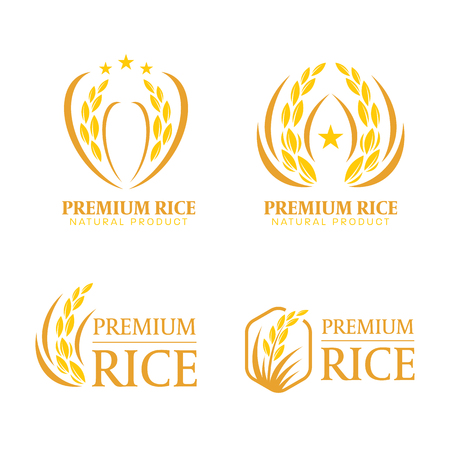 Yellow and brown paddy rice premium organic natural product banner logo sign vector design