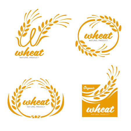 Yellow Paddy Wheat rice grain products food banner sign  art design