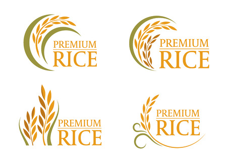 Yellow and green paddy premium rice logo sign 4 style vector design