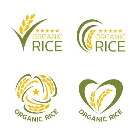 Yellow and green organic rice logo collection vector design