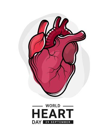 World heart day with red human heart Real and outline Drawing sign on white background vector design