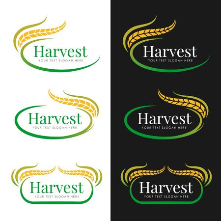 Yellow green Harvest paddy rice logo vector collection design